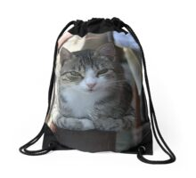 Cute Tabby Cat - Sitting On The Fence Drawstring Bag