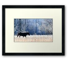 Horse and Owl Framed Print