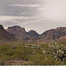 Desert Mountains, Texas by Tamas Bakos