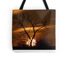 Fireball Sunset tree Tote Bag