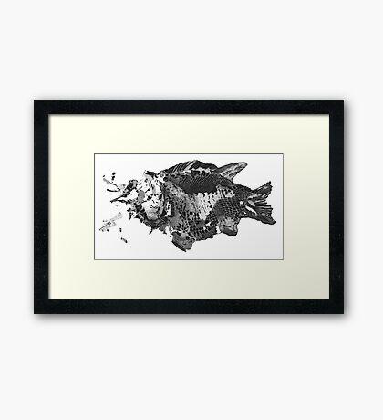 Prehistoric Fossil Fish Framed Print