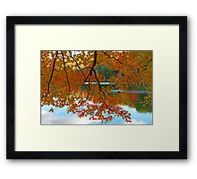 Fall in Quebec Framed Print
