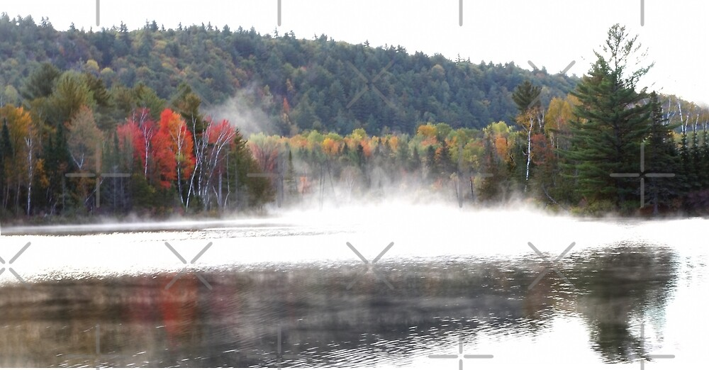 Early fog in Quebec by Jim Cumming