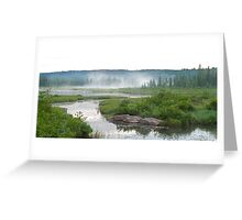 Algonquin Park - Costello Creek Greeting Card