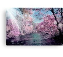 woods 5 Canvas Print