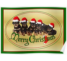 Vector Merry Christmas Rottweiler Puppies Greeting Card Poster