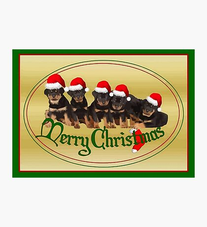 Vector Merry Christmas Rottweiler Puppies Greeting Card Photographic Print