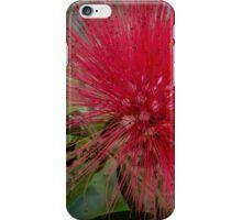 Moanalua Gardens Power Puff Flower iPhone Case/Skin
