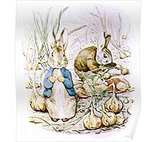 Peter Rabbit and Benjamin Bunny Poster