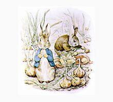 Peter Rabbit and Benjamin Bunny Unisex T-Shirt