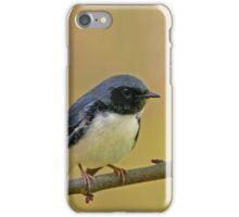 Black-throated Blue Warbler iPhone Case/Skin
