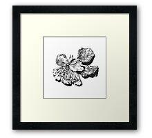 Decay - Flower Framed Print