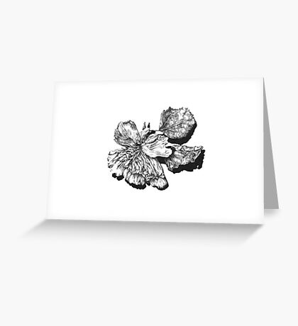 Decay - Flower Greeting Card