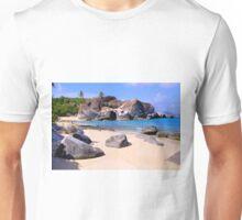 Baths BVI Unisex T-Shirt