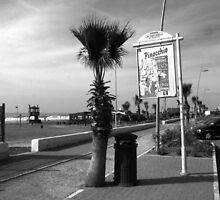 Ostia seafront by Giuseppe Cocco