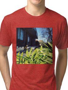 Neighbor's cat3 Tri-blend T-Shirt