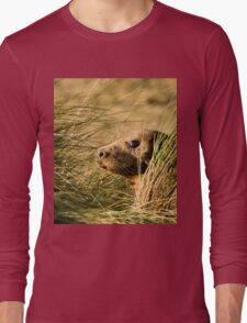 I've Been Spotted. Long Sleeve T-Shirt