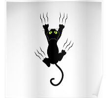 Scratching cat Poster