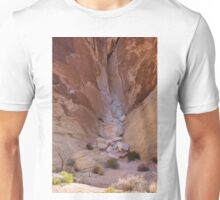 Valley of Fire #3 Unisex T-Shirt