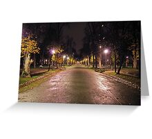 Late In The Night Greeting Card