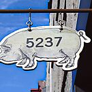 This Pig Might Fly by Ethna Gillespie