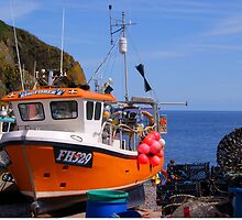 Cadgewith Cove Cornish Cod Catcher....!! by brimel55