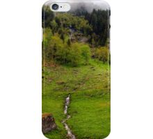Spring meets winter in the Alps iPhone Case/Skin