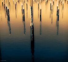 Pilings Port Jefferson Harbor by smoothstones