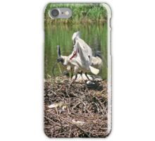 Australian White Ibis ~ The Community Nest iPhone Case/Skin