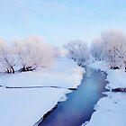 Pretty Winter Stream by lorilee