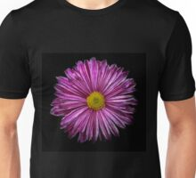 Pot chrysanthemum with pink stripes. Unisex T-Shirt