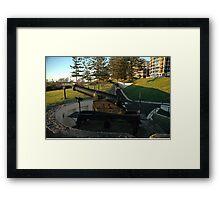 Wollongong Cannons, Australia 2007 Framed Print