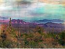 Desert Paints by Susan Werby