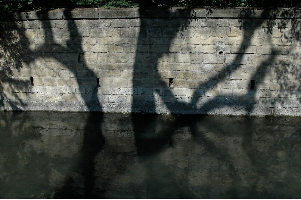 Water Reflections, Orange, France, Europe 2012 by muz2142