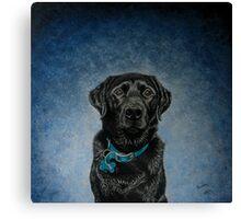 Bentley - Black Labrador Canvas Print