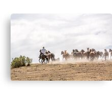 Bringing in the horses Canvas Print