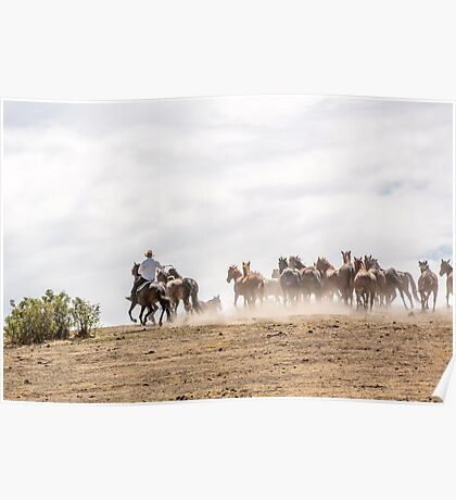 Bringing in the horses Poster