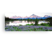 Grand Tetons 1 Canvas Print