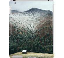 Cabin in the woods iPad Case/Skin