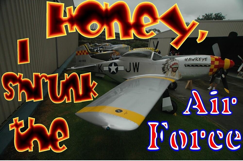 Honey, I Shrunk The Air Force, Tyabb 2012 by muz2142