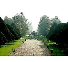 The Royal Garden Photographic Print