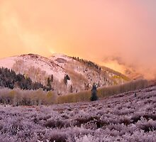 Touch of Winter by Chad Dutson