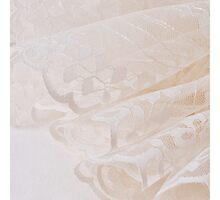 Scalloped Lace  Photographic Print