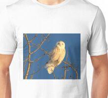 Sun kissed snowy Unisex T-Shirt