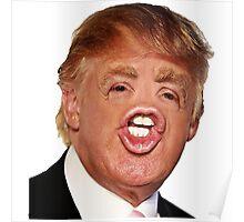 Funny Donald Trump Meme Poster