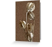 Seed Pods Macro Greeting Card