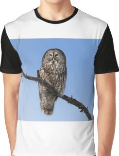 Great Grey owl sits in his perch Graphic T-Shirt