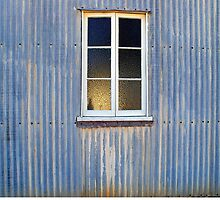 Window in a Corrugated Iron Wall by Paul Gilbert