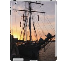 One and All at Sunset iPad Case/Skin