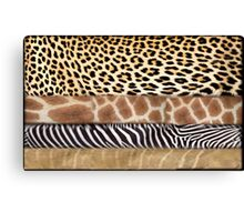 South Africa is synonymous with wildlife and nature Canvas Print